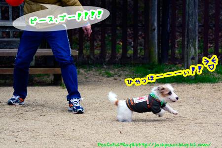 150203_yuasa4.jpg