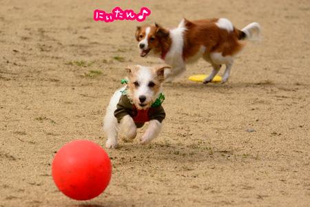 150203_yuasa9.jpg