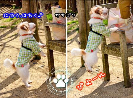 150310_yuasa.jpg