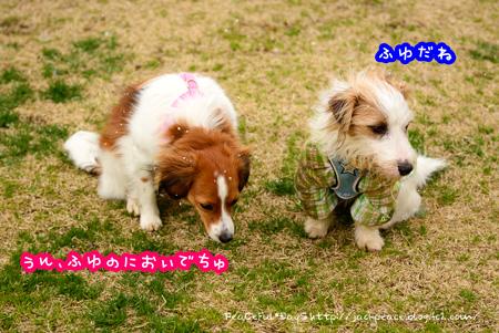 150310_yuasa15.jpg