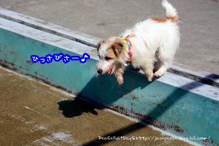 150317_yuasa10.jpg