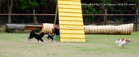 150412_yuasa4.jpg