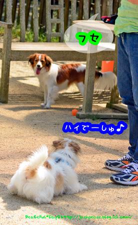 150423_yuasa2.jpg