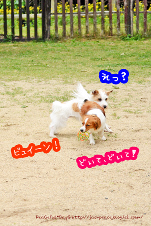 150514_yuasa4.jpg