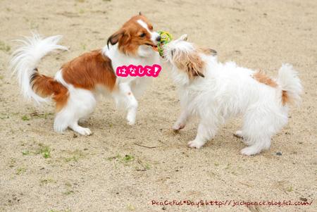 150514_yuasa6.jpg