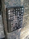 JR大垣駅 水都北口オアシス 化石説明