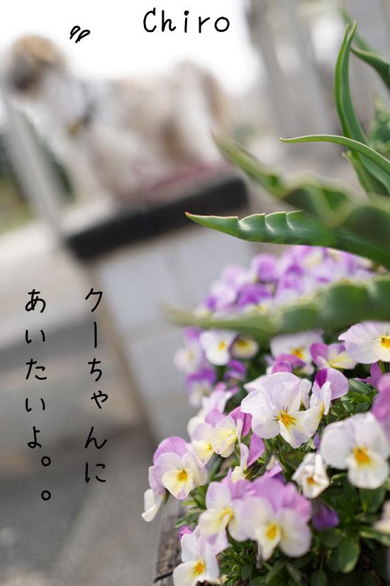 DSC05680_0957.jpg
