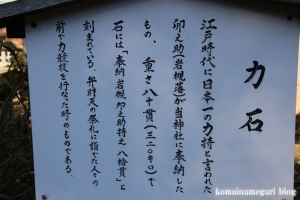 江島神社(藤沢市江の島)87