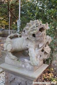 児玉神社(藤沢市江の島)11