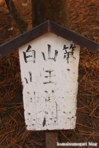 諏訪神社 下社(藤沢市片瀬)17
