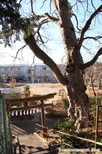 滝神社(府中市清水が丘)9