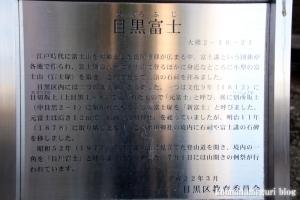 上目黒氷川神社(目黒区大橋)28
