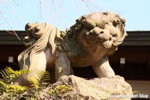 玉川神社(世田谷区等々力)25