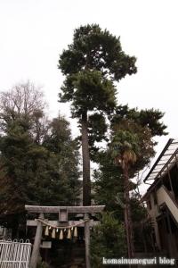 太陽稲荷神社(世田谷区桜丘)12