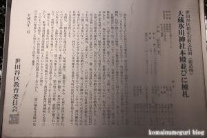 氷川神社(世田谷区大蔵)13
