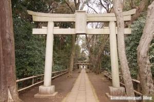 喜多見氷川神社(世田谷区喜多見)5
