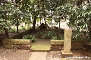 喜多見氷川神社(世田谷区喜多見)10
