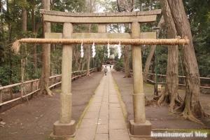 喜多見氷川神社(世田谷区喜多見)49