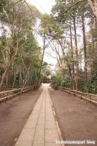 喜多見氷川神社(世田谷区喜多見)9