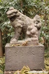 喜多見氷川神社(世田谷区喜多見)31