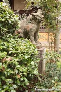 喜多見氷川神社(世田谷区喜多見)36