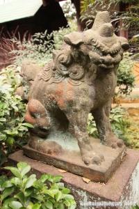 喜多見氷川神社(世田谷区喜多見)37