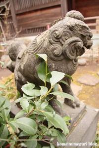 喜多見氷川神社(世田谷区喜多見)33
