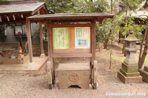 伊豆美神社(狛江市中和泉)12