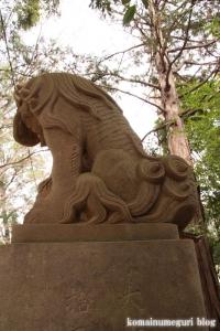 伊豆美神社(狛江市中和泉)42