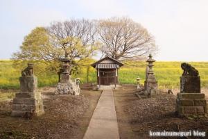 白山神社(羽生市上新郷)7