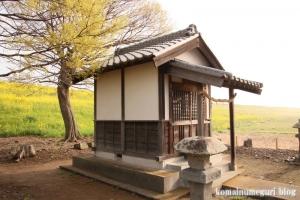 白山神社(羽生市上新郷)12