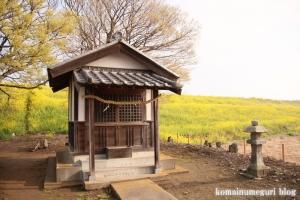 白山神社(羽生市上新郷)13