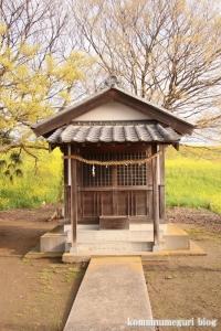 白山神社(羽生市上新郷)11