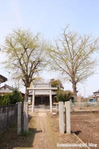 鷲宮神社(羽生市秀安)1