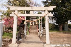古江宮田神社(羽生市西)4
