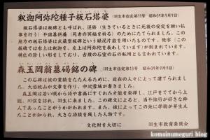 古江宮田神社(羽生市西)18