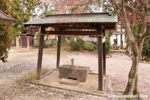 大白天神社(羽生市北)15