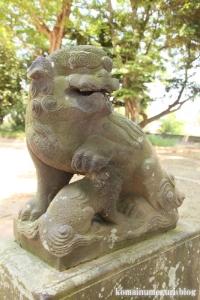 大相模久伊豆神社(越谷市大成町)11