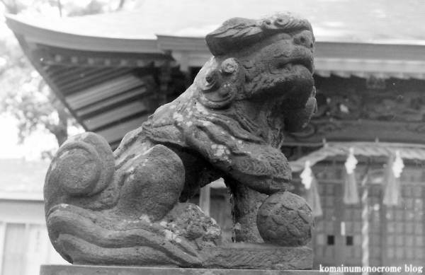 北加瀬熊野神社(川崎市幸区北加瀬)7