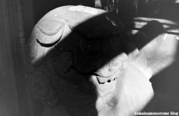 須賀神社(新宿区須賀町)2