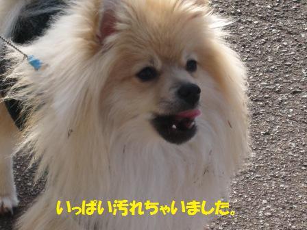 20141228_9.jpg