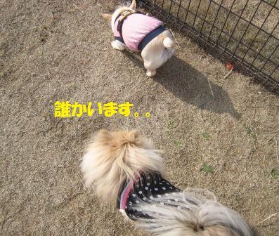 201450315_3.jpg