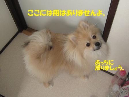 20150319_1_1.jpg