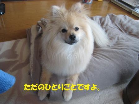 20150427_6.jpg
