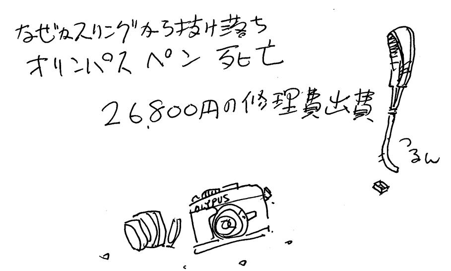 1504154.jpg