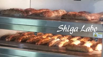 Shiga-Labo-2015_5_13-III.jpg