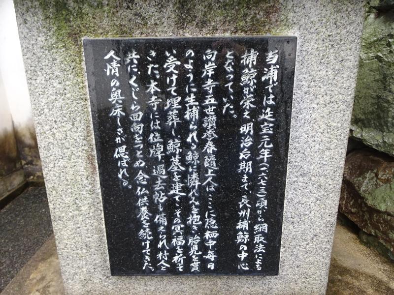 150301-72.jpg