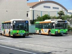 K537とM192
