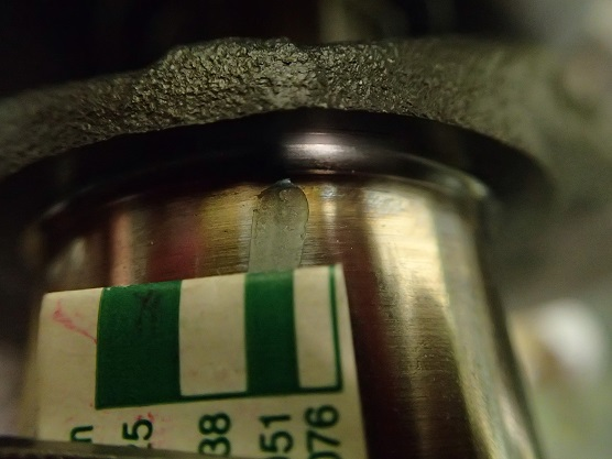 P5250708茶→黒#3