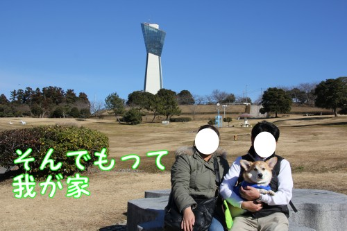 20150129_04.jpg
